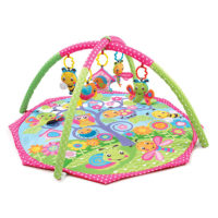 Playgro Bugs & Bloom Activity Gym