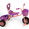 Basket trike -Purple and Pink