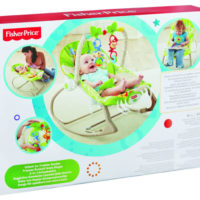 Fisher Price Infant to Toddler Rainforest Rocker