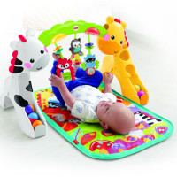 Fisher Price Newborn to Toddler Play Zone